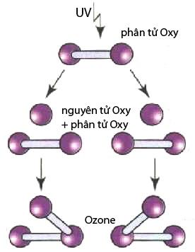 Sự hình thành ozone