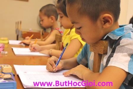 bút chấm đọc giá bao nhiêu?