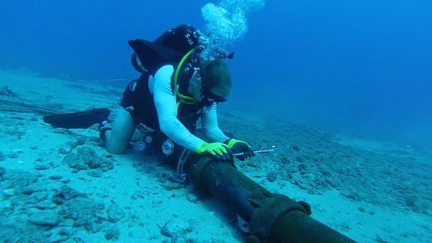 Cáp quang biển AAG đã được khôi phục 100% đường truyền
