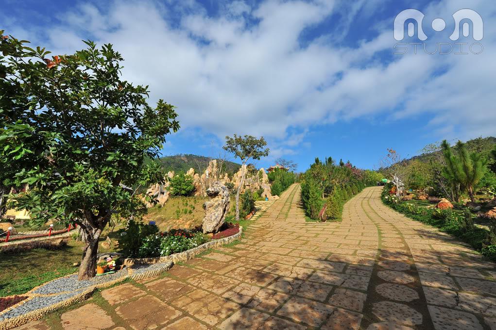 Kết quả hình ảnh cho bonsai Khu du lịch Trúc Lâm Viên