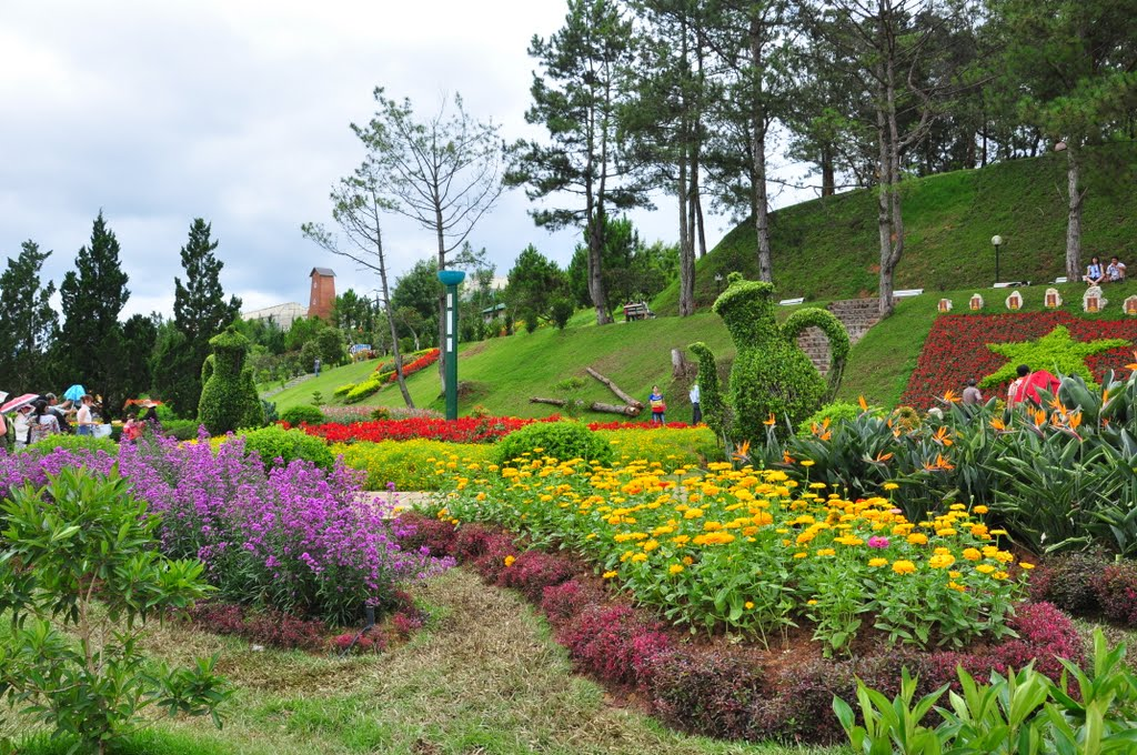 Kết quả hình ảnh cho Vườn hoa thành phố Đà Lạt