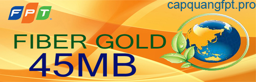 gói cước cáp quang fpt cho công ty fiber gold