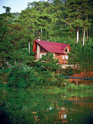 Nhà gỗ xây dựng trên khu đất 3 hecta ở đồi Đà Lạt