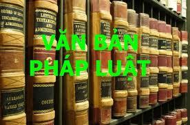 Mối quan hệ giữa tính hợp pháp và tính hợp lý trong văn bản quy phạm pháp luật