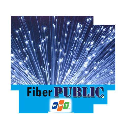 FiberPublic 50Mbps