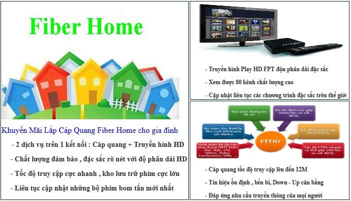 FPT Tỉnh Bình Định