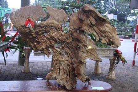Sản phẩm lũa gỗ ngọc am.