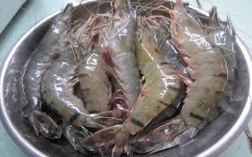 Phòng ngừa nhiễm độc chì trong thực phẩm bằng cách sử dụng máy bkozone