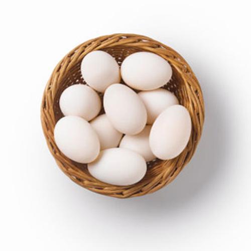 Máy Ozone xử lý trứng