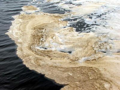 Nước thải công nghiệp ảnh hướng lớn tới môi trường