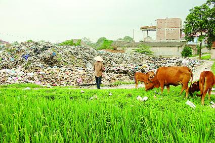 Huyện Quảng Xương xây dựng mô hình  xử lý rác thải sinh hoạt tại gia đình