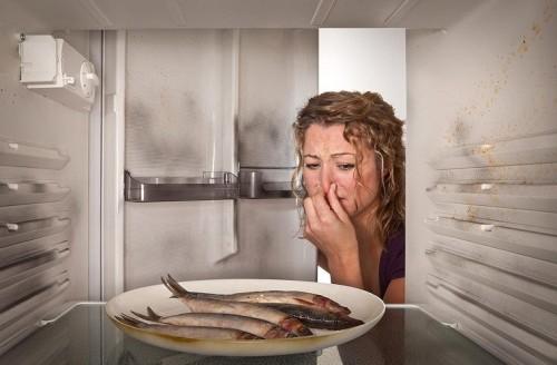 Những lỗi thường gặp của tủ lạnh và cách khắc phục