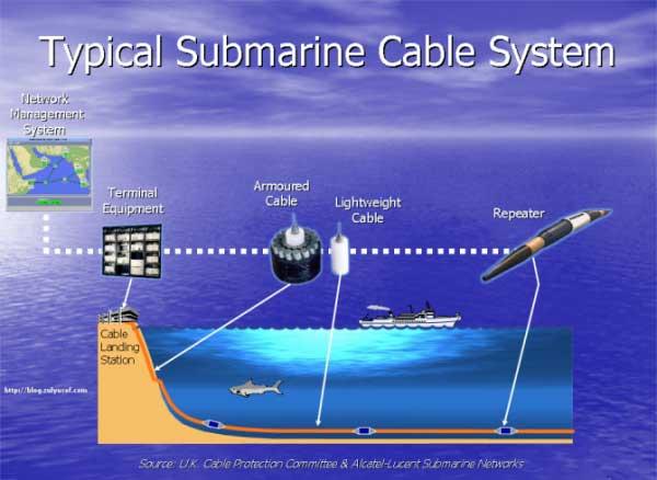 Cáp quang biển AAG bắt đầu được sửa chữa
