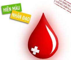 Viettel HCM kêu gọi thanh niên hiến máu nhân đạo