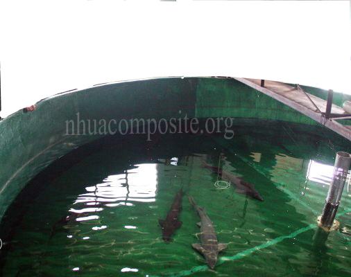 bể cá composite 3