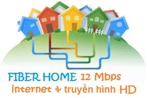 Fiber Home