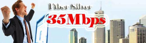 Fiber Silver
