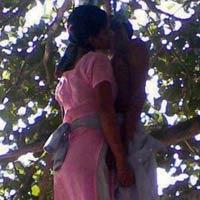 Tự tử trên cây trong tư thế... hôn nhau