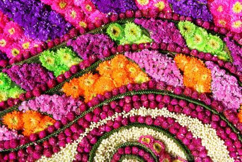 Chiangmai lễ hội hoa độc nhất vô nhị diễn ra từ tháng 2