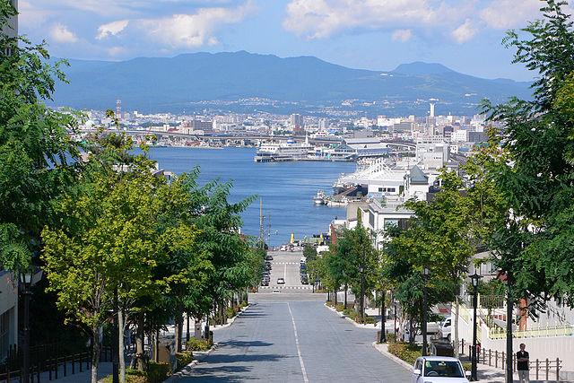 Vé máy bay từ Hồ Chí Minh đến Thành phố  Hakodate