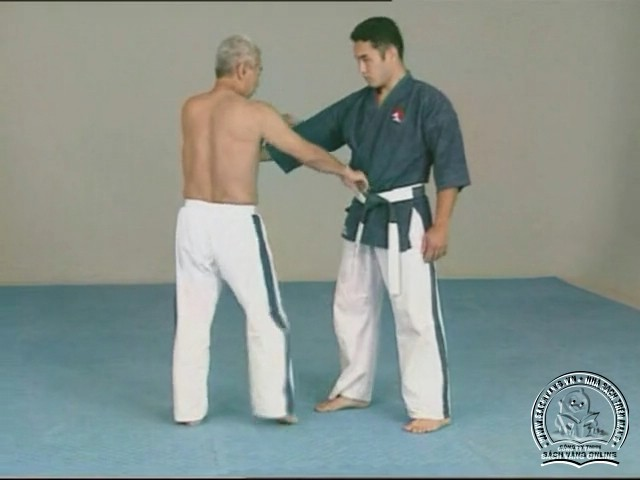 Yoseikan Budo Complete Course with Hiroo Mochizuki - picture 01
