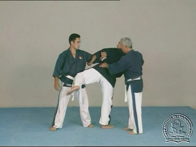 Yoseikan Budo Complete Course with Hiroo Mochizuki - picture 02