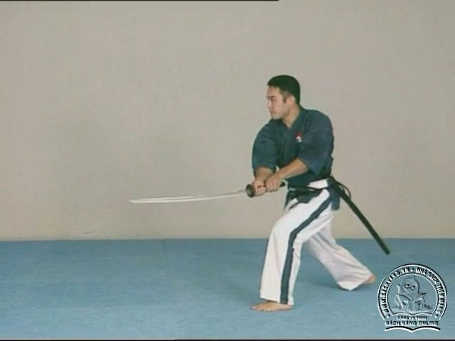 Yoseikan Budo Complete Course with Hiroo Mochizuki - picture 05