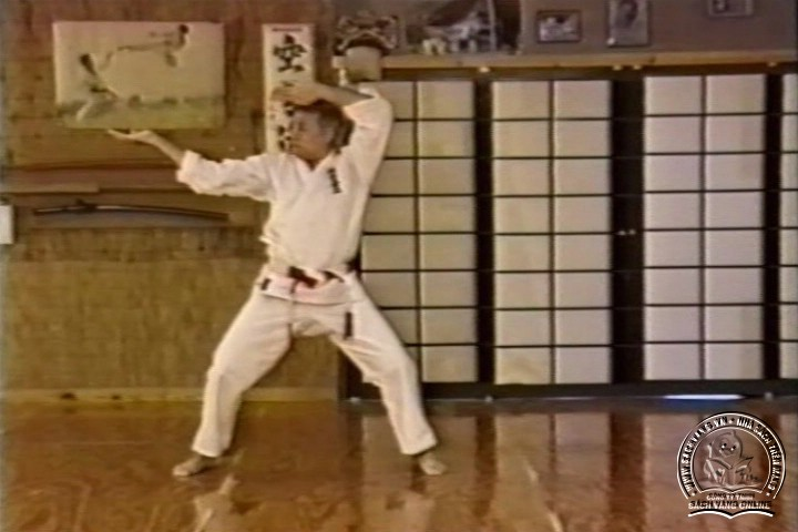 Mastering Shorin Ryu Karate by George Alexander Vol 1-10 - Tự Luyện Shorin Ryu Karate Từ A-Z - Picture 03