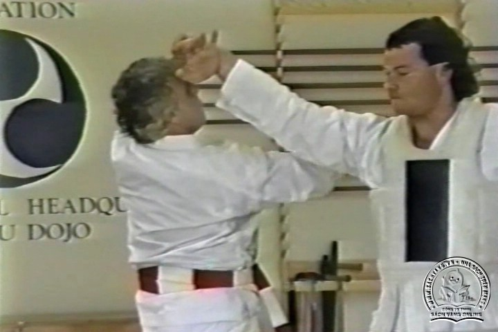 Mastering Shorin Ryu Karate by George Alexander Vol 1-10 - Tự Luyện Shorin Ryu Karate Từ A-Z - Picture 05