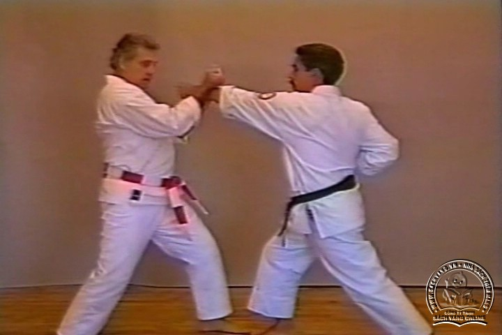 Mastering Shorin Ryu Karate by George Alexander Vol 1-10 - Tự Luyện Shorin Ryu Karate Từ A-Z - Picture 08