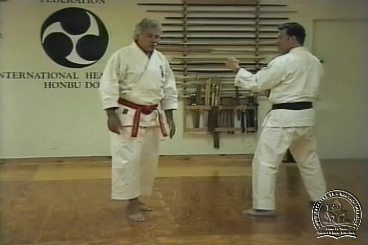 Mastering Shorin Ryu Karate by George Alexander Vol 1-10 - Tự Luyện Shorin Ryu Karate Từ A-Z - Picture 09