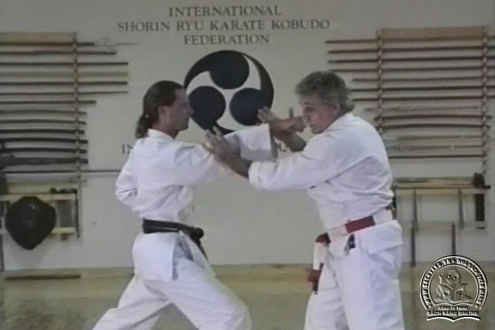 Mastering Shorin Ryu Karate by George Alexander Vol 1-10 - Tự Luyện Shorin Ryu Karate Từ A-Z - Picture 10