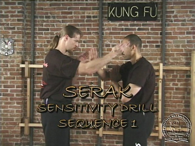 Advanced Silat Concepts with Joseph Simonet and Addy Hernandez - Luyện Silat Trình Độ Nâng Cao - Picture 06