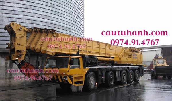 thuê cẩu 200 tấn